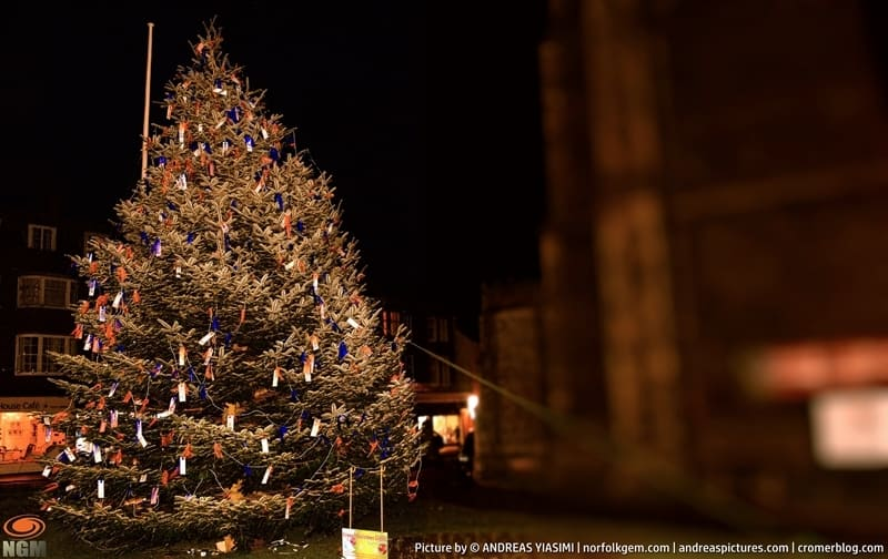 Cromer Christmas Tree at night picture Andreas Yiasimi (2)